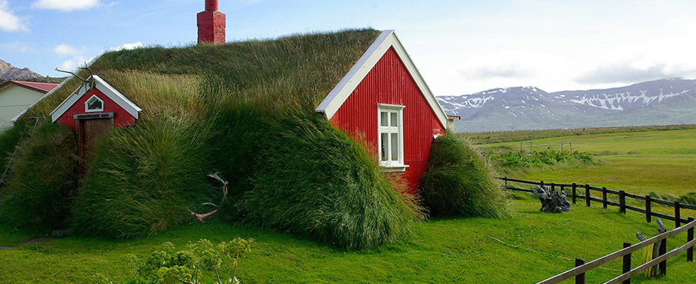 energy efficient grass roof